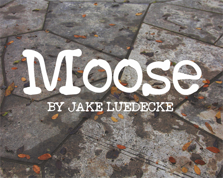 Moose font by Jake Luedecke Motion & Graphic Design