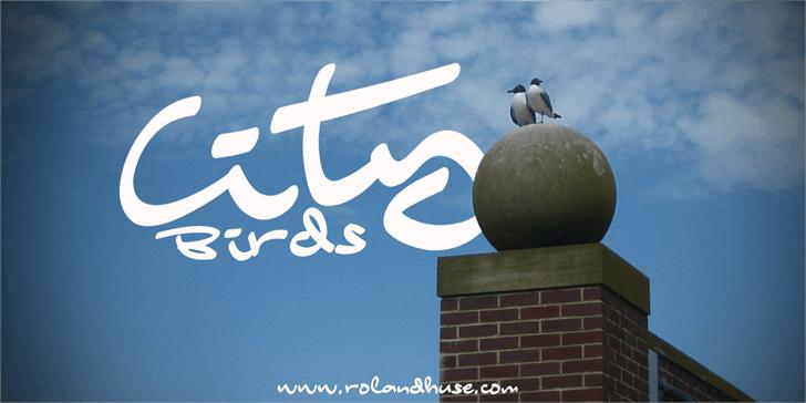 City Birds font by Roland Huse Design