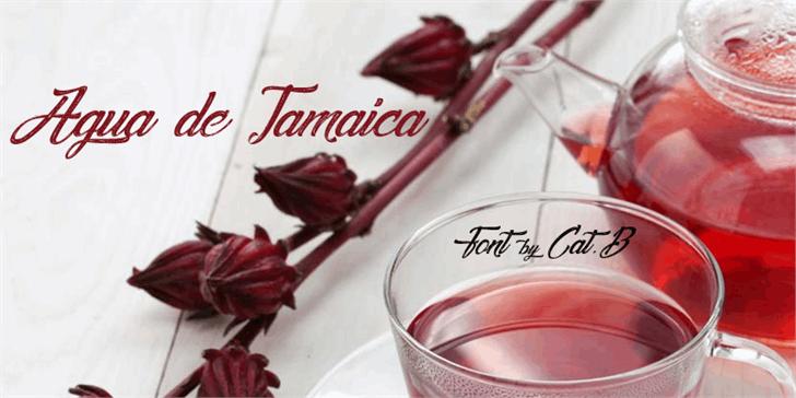 Agua de Jamaica font by Foundmyfont Studio Typeface LTD