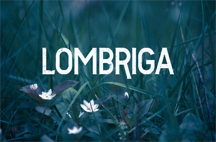 Vtks Lombriga font by VTKS DESIGN