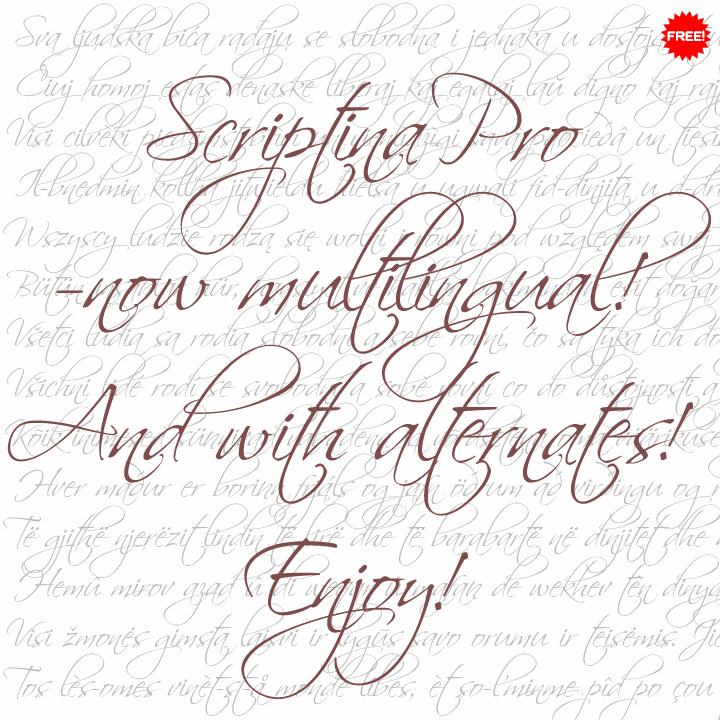 Scriptina Pro font by CheapProFonts