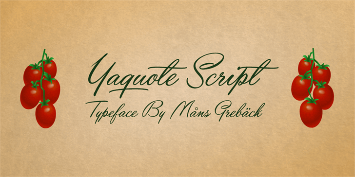Yaquote Script Personal Use font by Måns Grebäck
