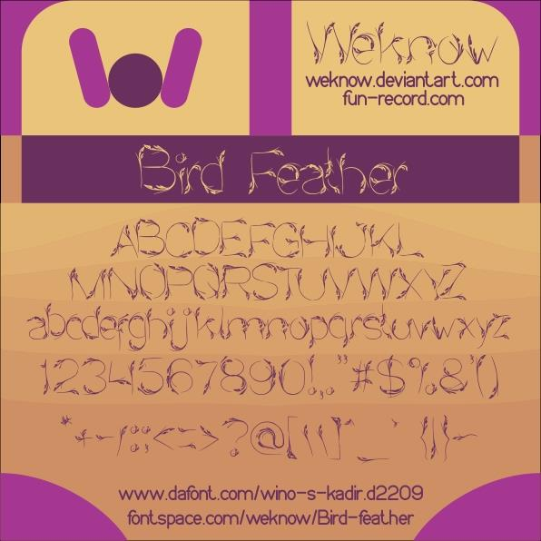 Bird Feather font by weknow