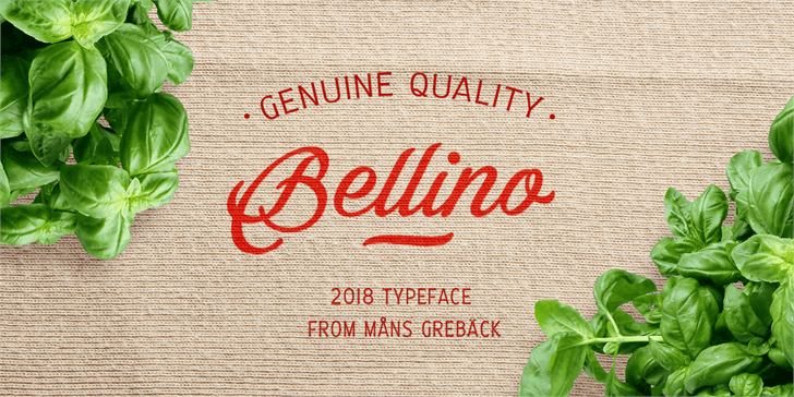 Bellino PERSONAL USE ONLY Font design plant