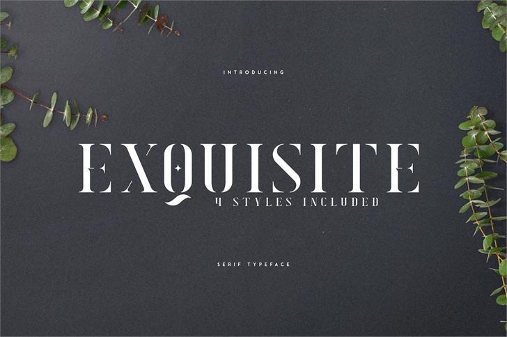 EXQUISITE - SERIF TYPEFACE Font book design
