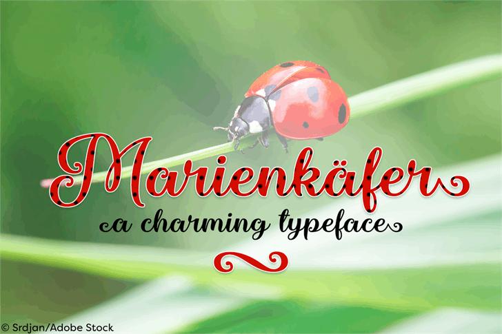 Marienkaefer Font screenshot