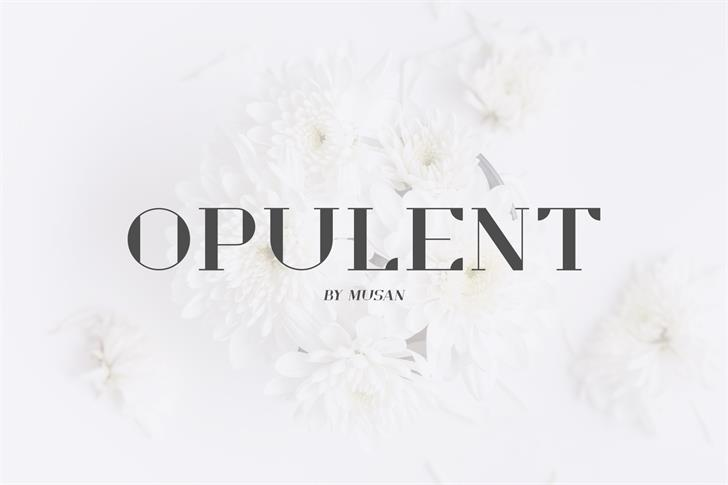 Opulent Demo Font wedding dress