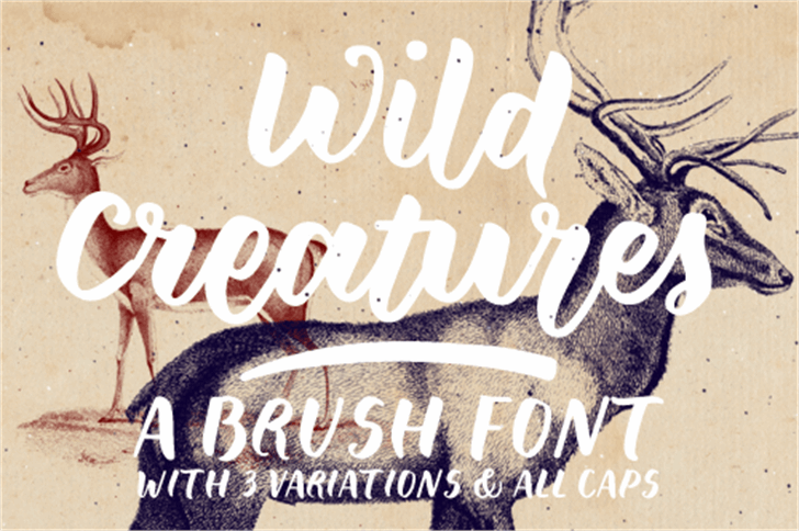 Wild Creatures Sample font by justlikethistrain