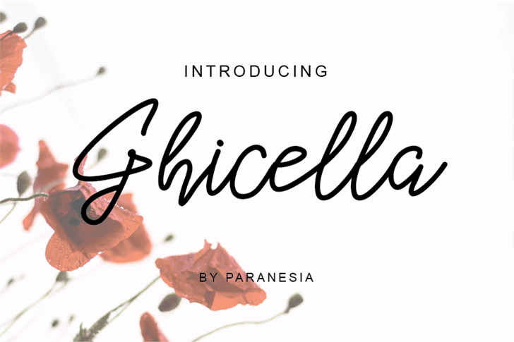 Ghicella Font design cartoon
