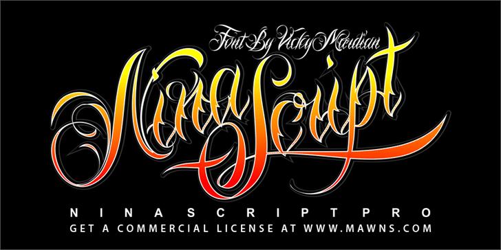 Nina Script Demo Font design typography
