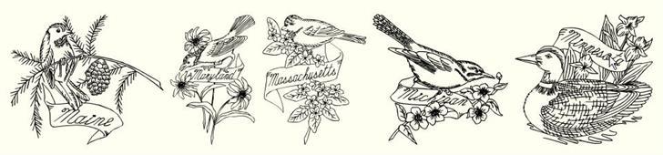 StateBirds Font sketch drawing