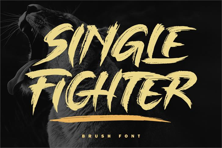 Single Fighter Font poster