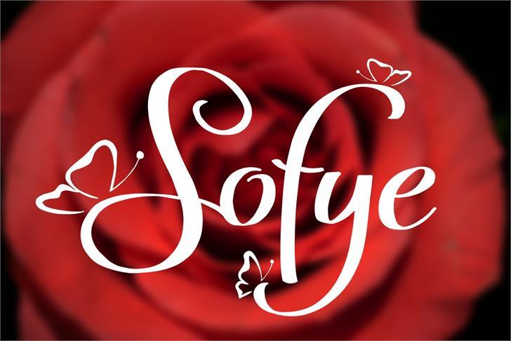 Sofye Font design graphic