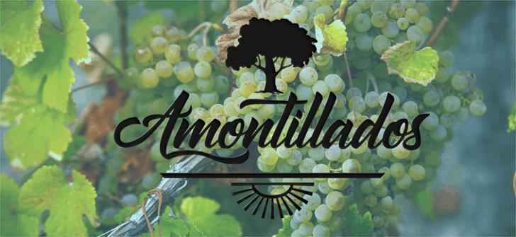 Amontillado font by Octotype