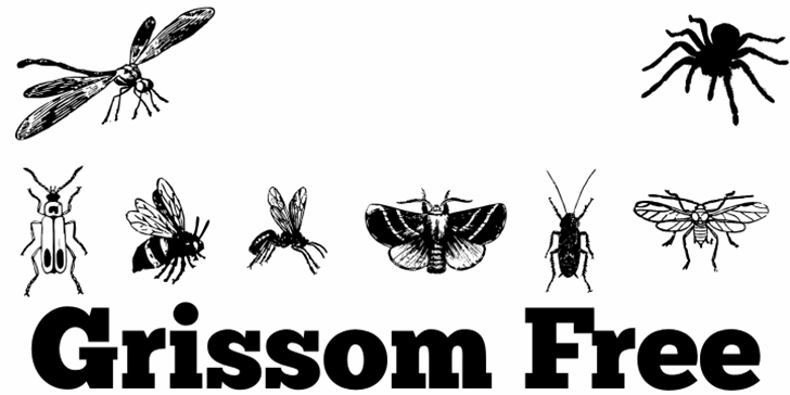 Grissom Free Font insect butterfly