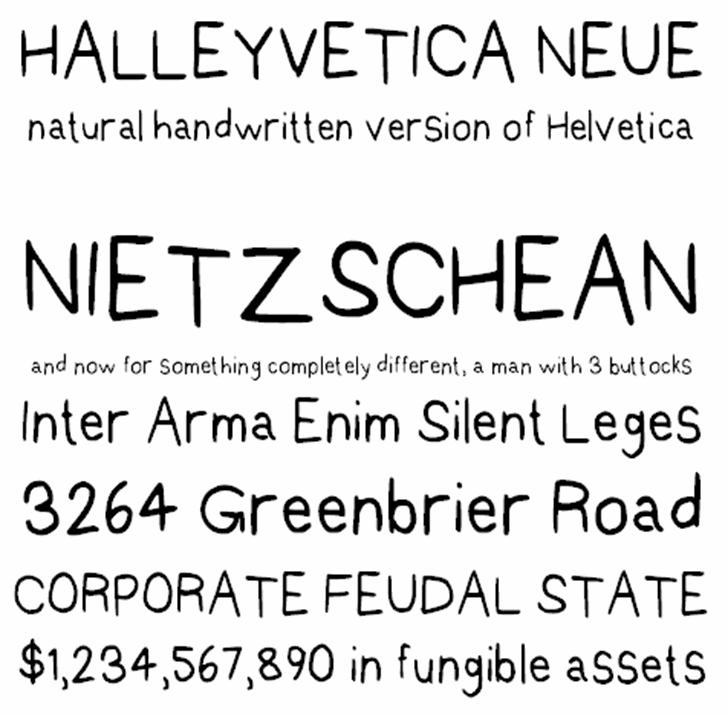 Halleyvetica Neue NBP font by total FontGeek DTF, Ltd.