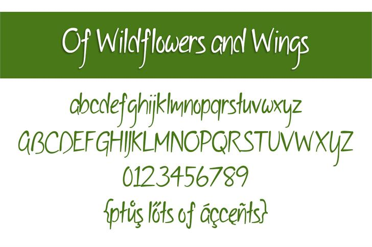 Of Wildflowers and Wings Font handwriting font