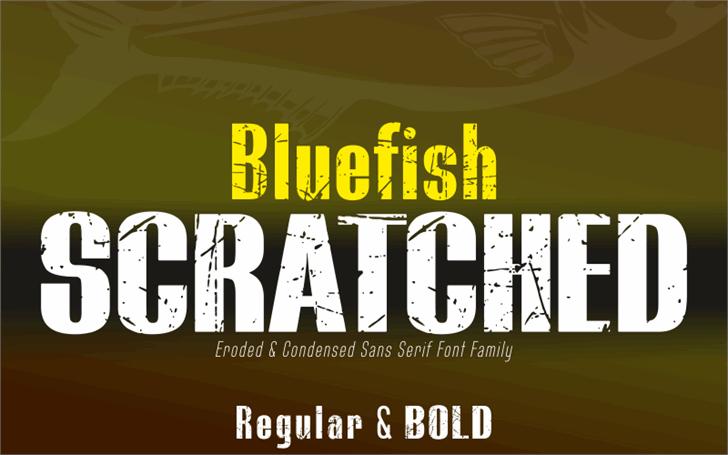 BLUEFISH SCRATCHED Demo Font poster screenshot