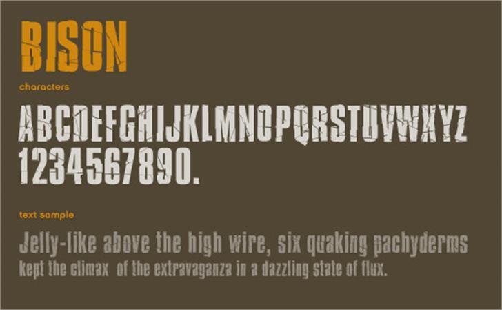 Bison Font design poster