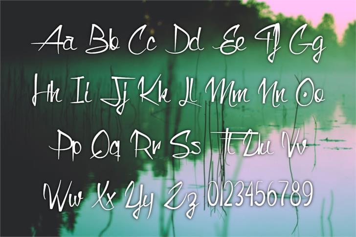 Monkey Snake Font poster