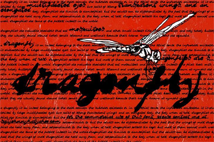 DRAGONFLY saji font by SAJI JOHNNY KUNDUKULAM