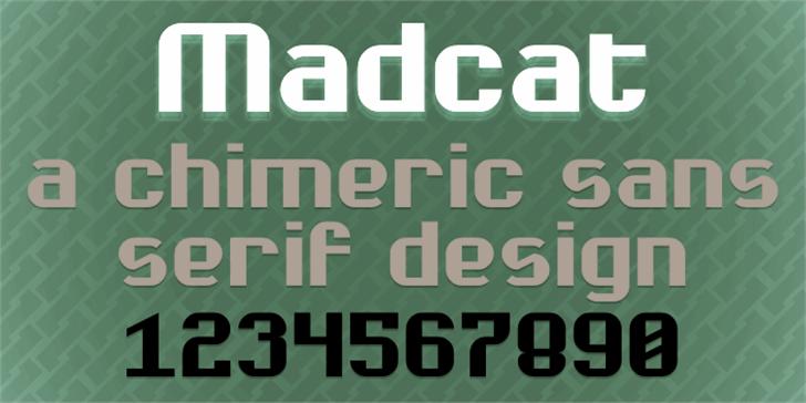 Madcat Font poster book