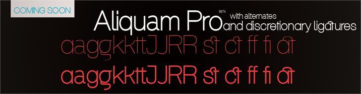Aliquam Font book design
