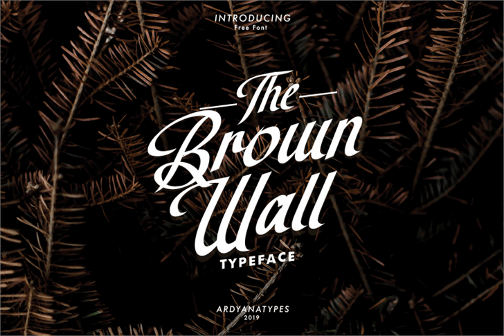 The Brown Wall Font design poster