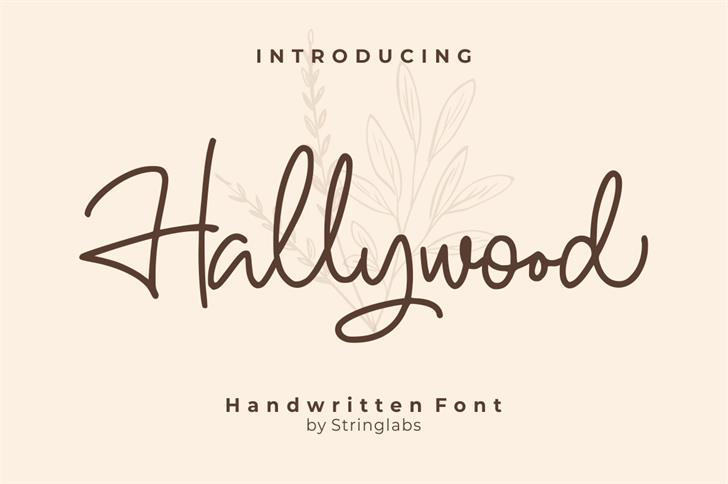 Hallywood Font poster