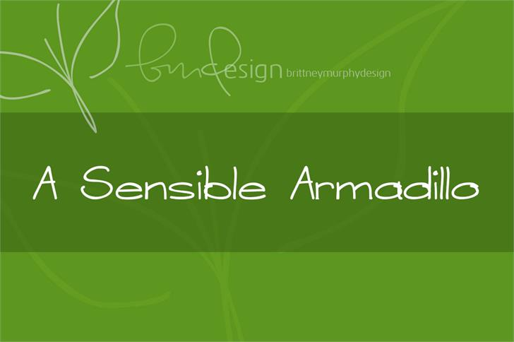 A Sensible Armadillo font by Brittney Murphy Design