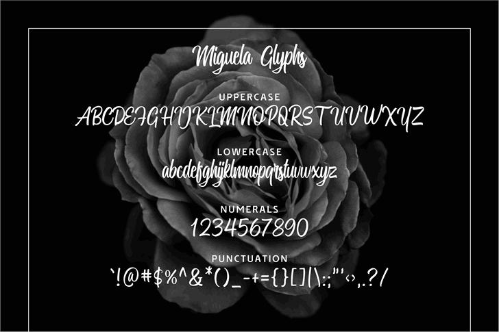 Miguela Script Font text screenshot