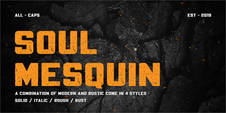 Mesquin Demo Font poster