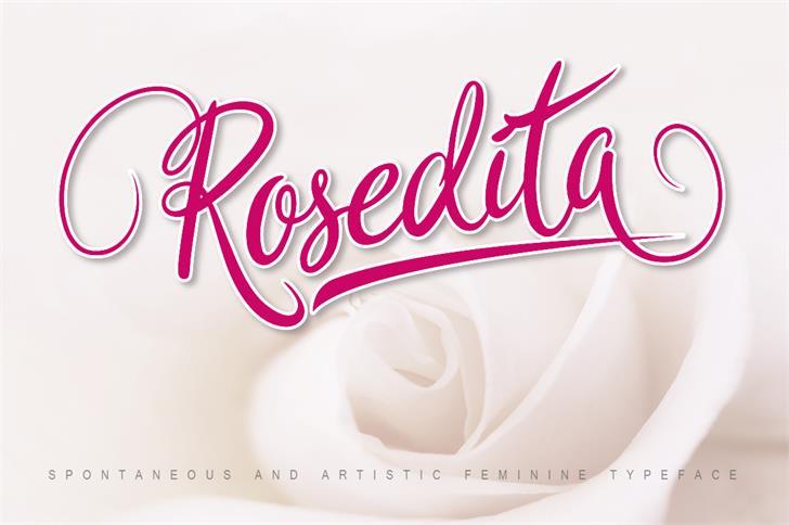 Rosedita Font design typography