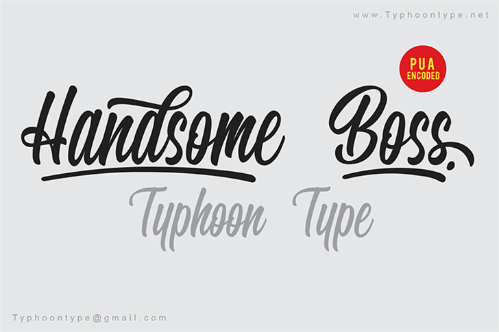 Handsome Boss - Personal Use Font handwriting