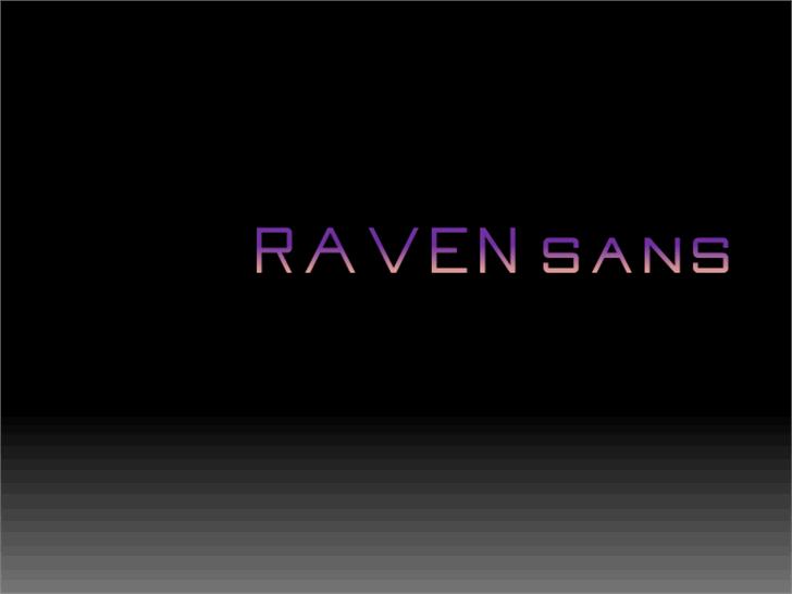 Raven Sans NBP Font screenshot design
