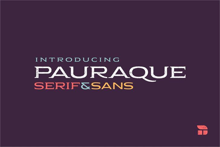Pauraque_Serif_Rough Font design graphic