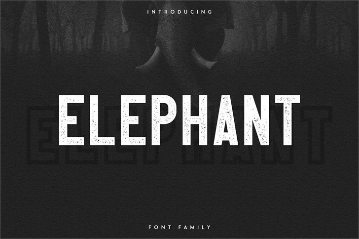 Elephant font by vladfedotovv