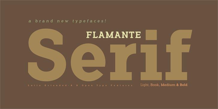 Flamante Serif Bold Font design screenshot