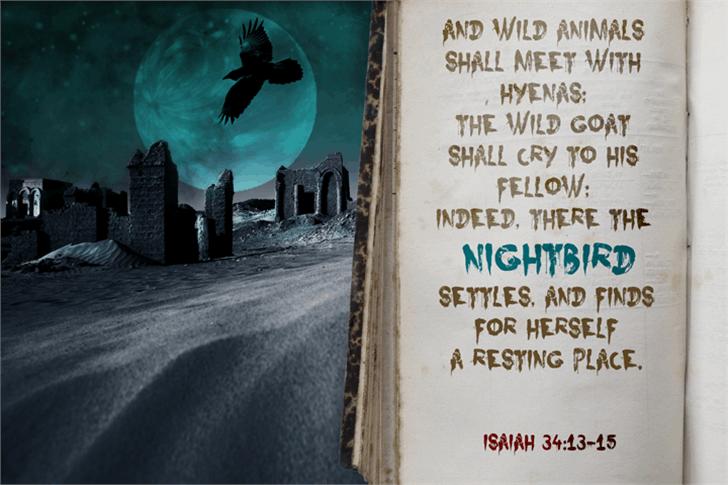 Nightbird Font sign poster
