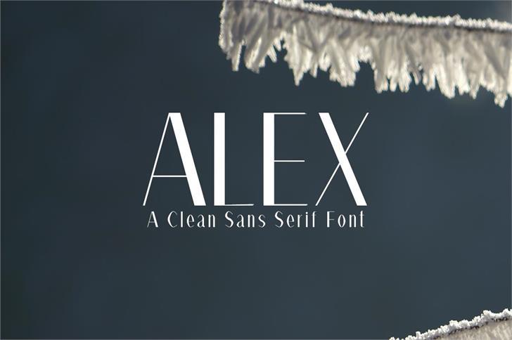 Alex Regular Font design screenshot