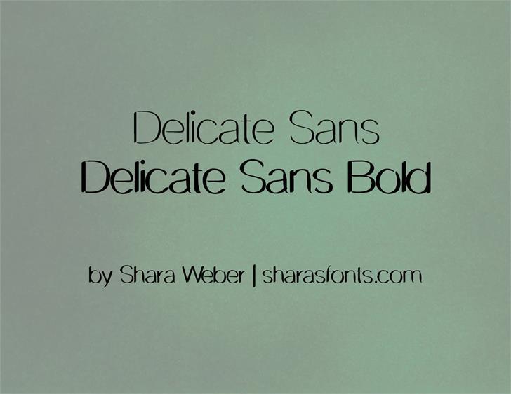 DelicateSans Font screenshot font