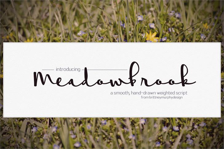 Meadowbrook font by Brittney Murphy Design