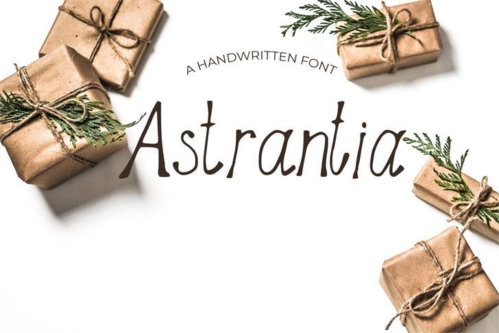 Astrantia Font houseplant design