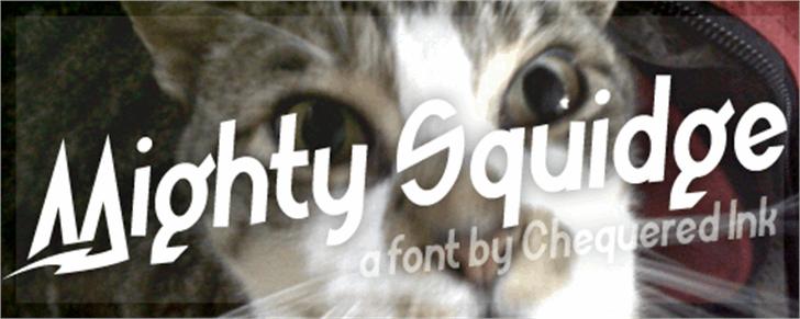 Mighty Squidge Font cat indoor