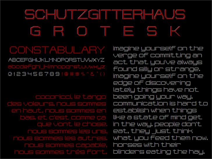 Schutzgitterhaus-Grotesk NBP Font screenshot poster