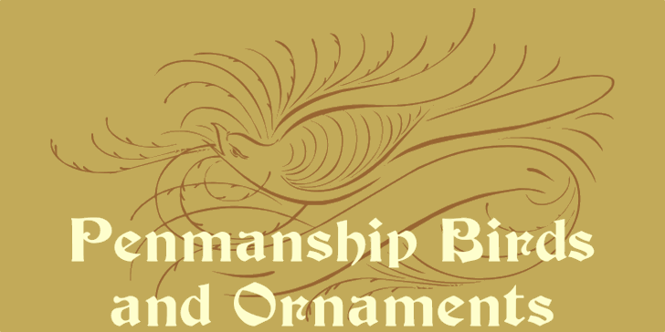 Penmanship Birds and Ornaments  font by Intellecta Design