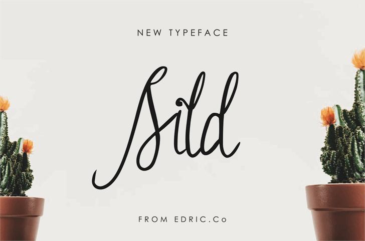 Sild Font design handwriting