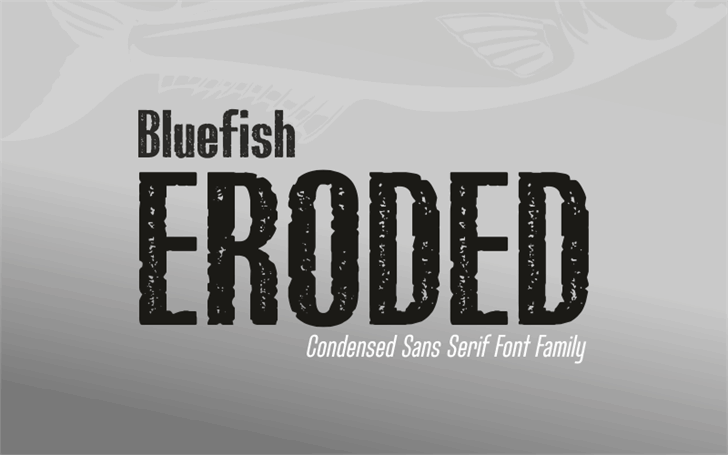 Bluefish_ERODED DEMO Font poster design