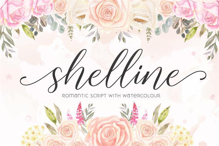 shelline Font poster