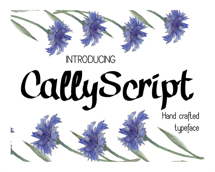 Cally Font text book